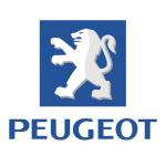Peugeot Autoschlüssel